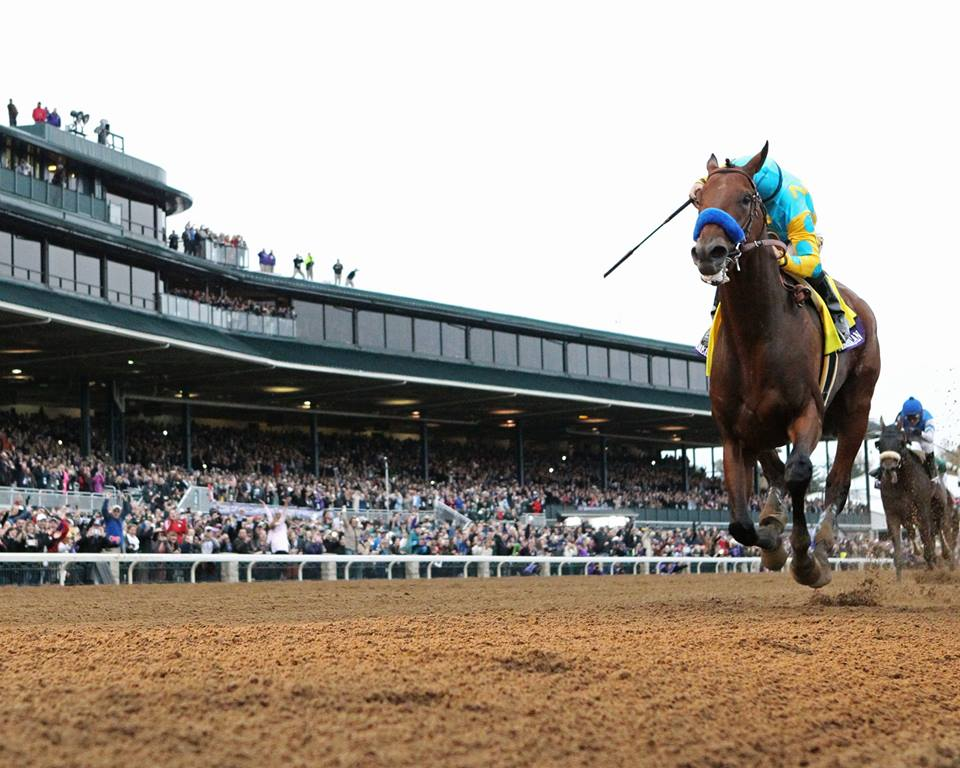 American Pharoah Makes History And Keeneland Does Too