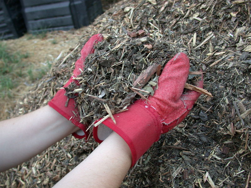Mulch_shredded_yard_waste wikipedia
