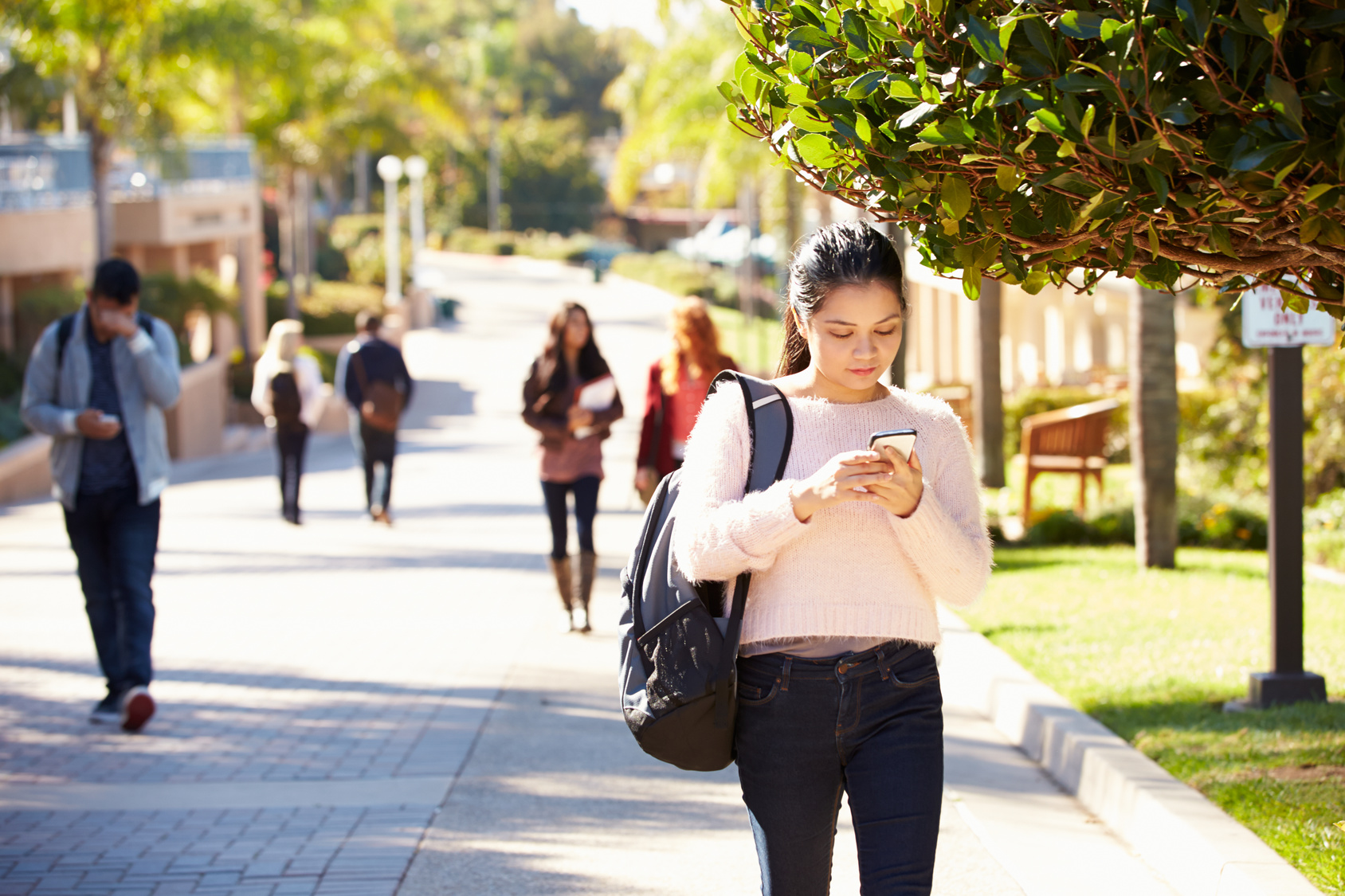 BBB Trends: College students should avoid these hard ...
