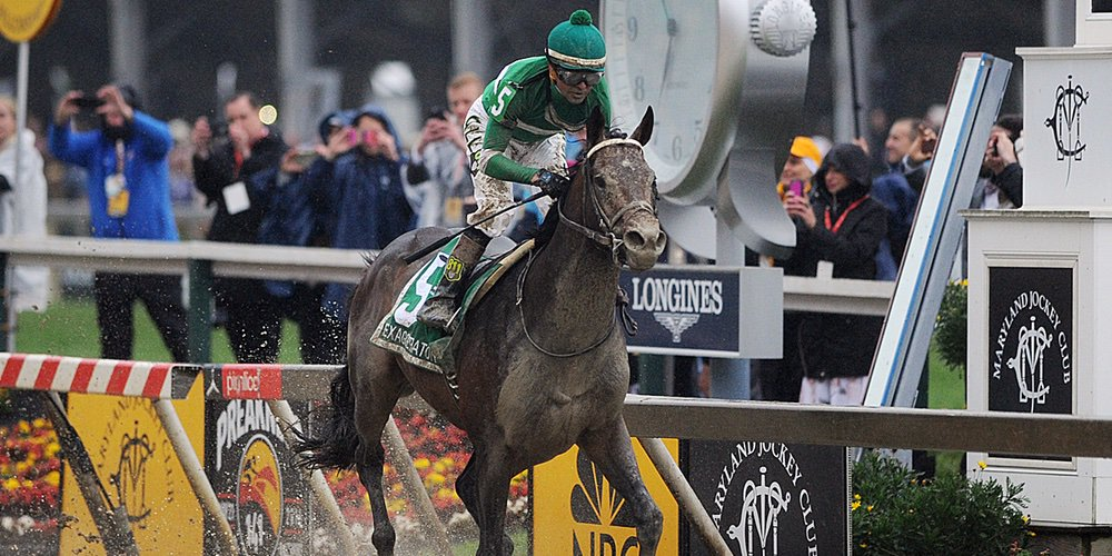 Exaggerator defeated Nyquist in the Preakness Saturday after losing four straight races to him (Pimlico.com Photo)