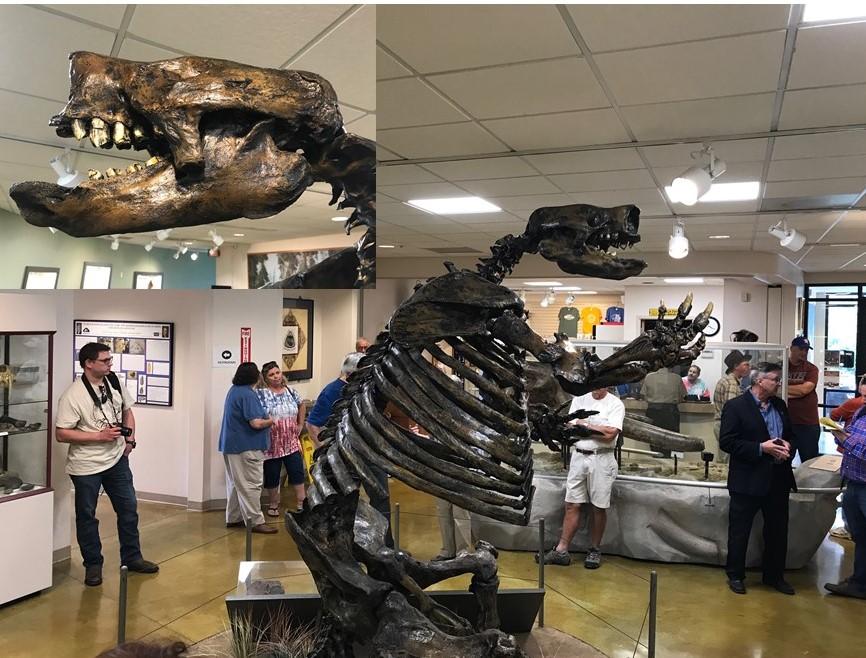 Big bone lick museum
